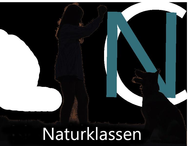 Autisme skole og undervisning af børn med ASF på Roskilde Friskole.
